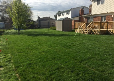 Sterling Heights Image 4 Sod